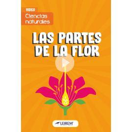 Las partes de la flor